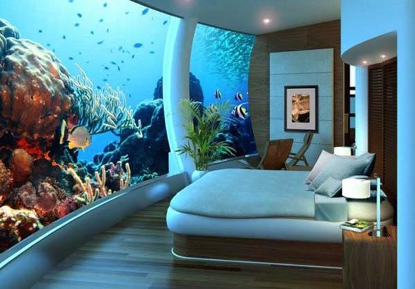 chambre-aquarium
